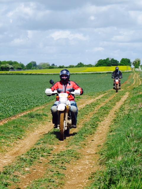 Wiltshire TRF